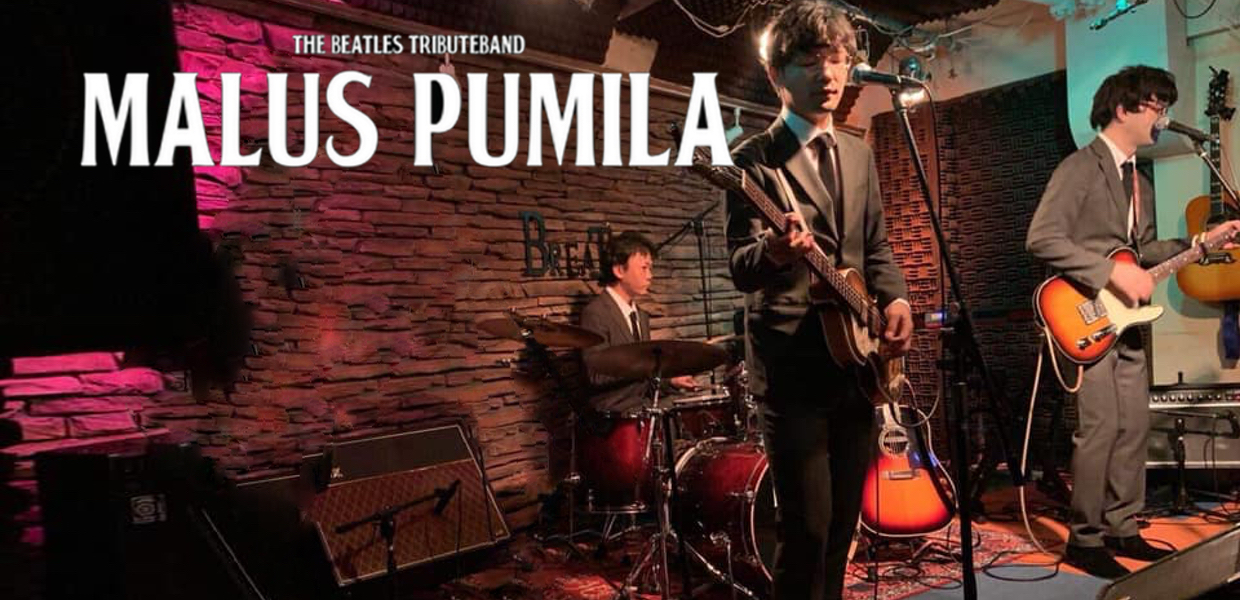 The Beatles Tribute Band MALUS PUMILA